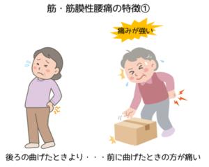 筋・筋膜性腰痛の特徴①