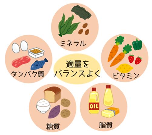 五大栄養素 免疫力 バランスよく